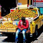 Hardy_Diego_Ernst_Ecuador