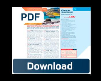 Globista-PDF-Download.psd