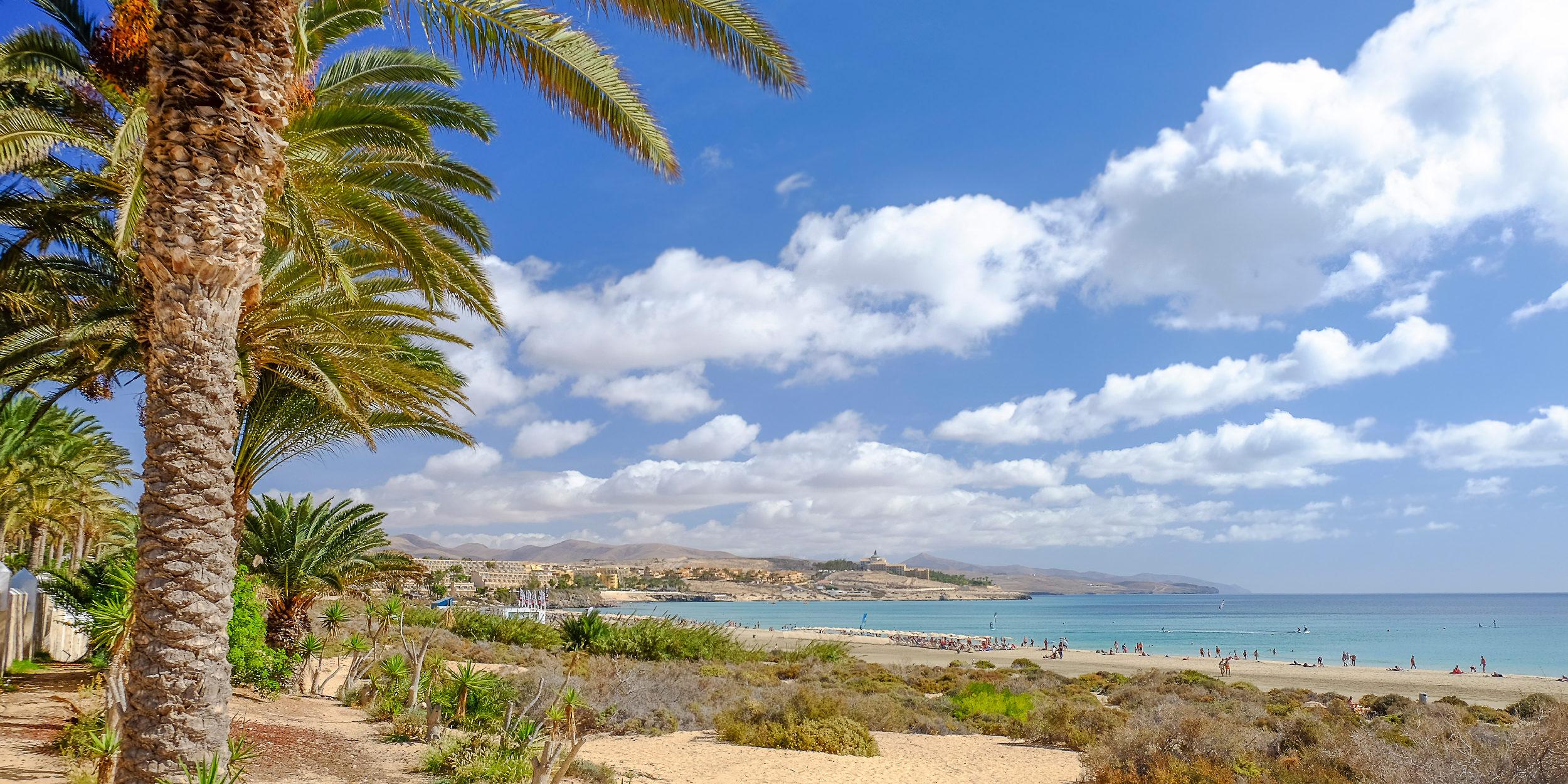 View on the Beach Playa de Costa Calma on the Canary Island Fuerteventura, Spain.
