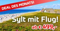 deal_des_monats